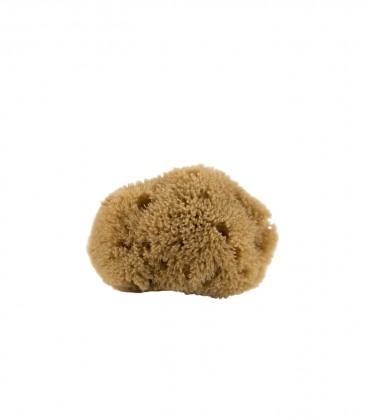 Mini esponja natural